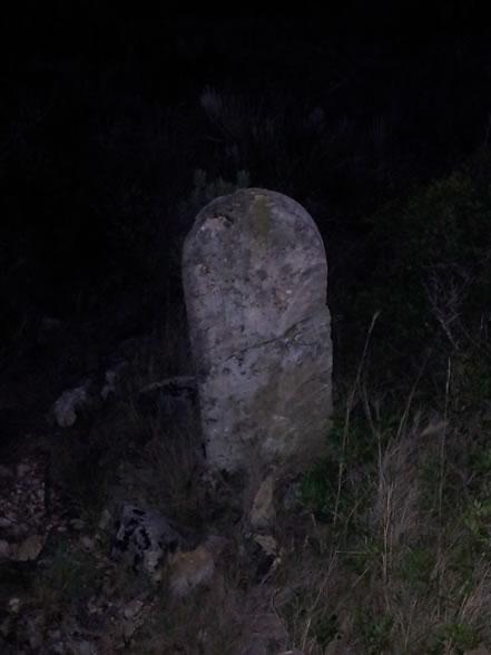 Pedra a la Serra Pedragosa